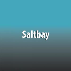Saltbay